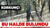 Korkunç olay! Ağaca asılı erkek cesedi bulundu